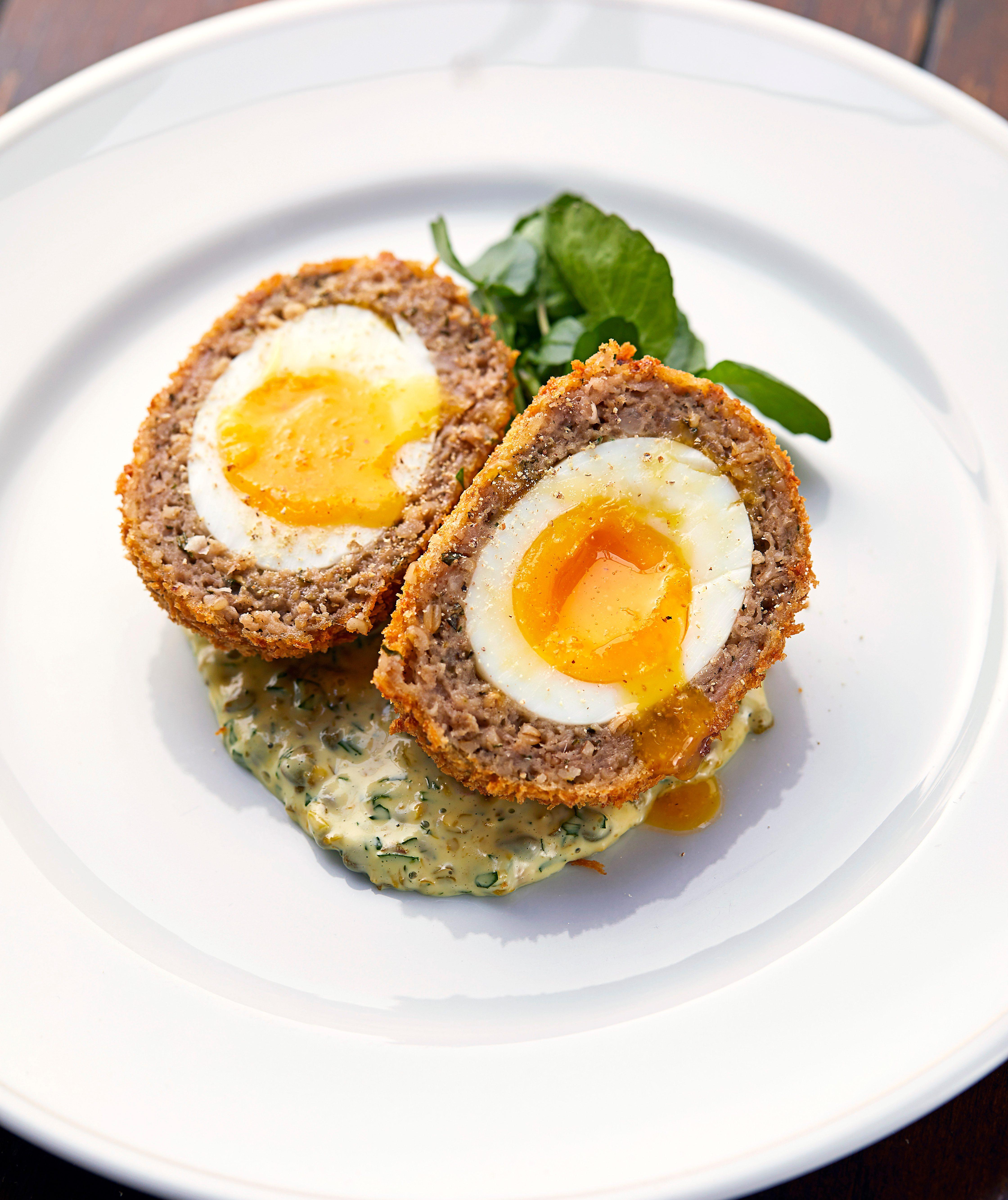 Scotch Egg The Holborn Dining Room